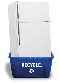 Fridge Recycle